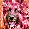 Alone dogs running puzzle
